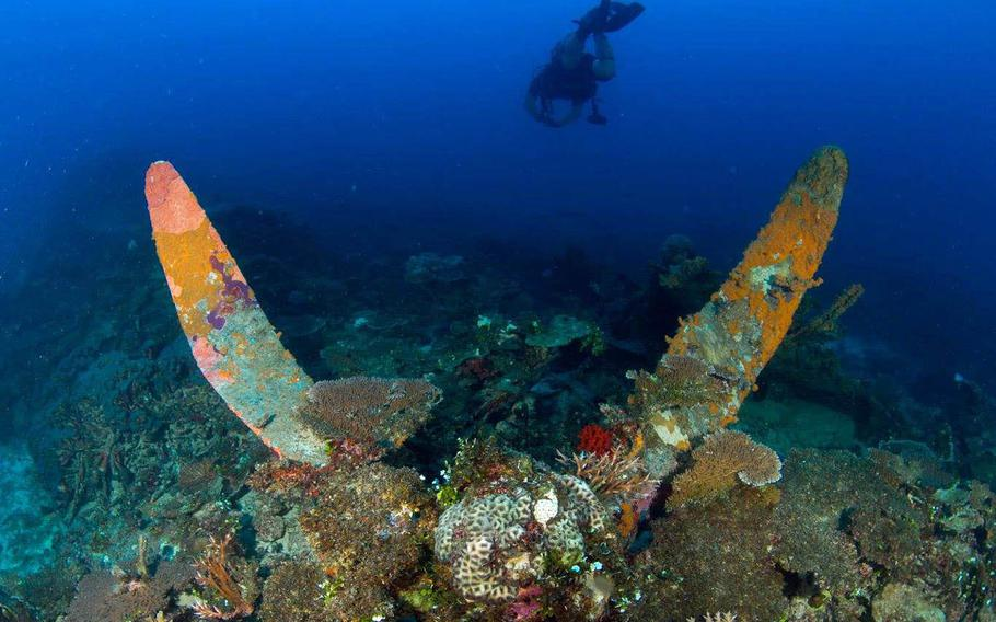 The Kwajalein MIA Project found the coral-encrusted propellers of a Coronado patrol bomber plane in Kwajalein Lagoon in 2011.