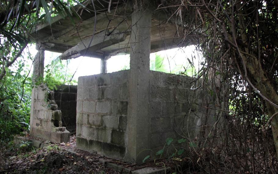 Atop a steep jungle hill, hidden in the dense brush at Heshikiya's White Beach Naval Facility in Okinawa, lies an Imperial Japanese lookout post used during World War II.