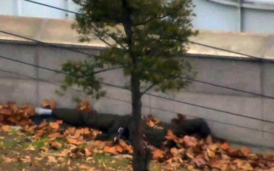 A North Korean defector, injured from multiple gunshot wounds, lies under a pile of leaves in the truce village of Panjumon, Nov. 13, 2017.