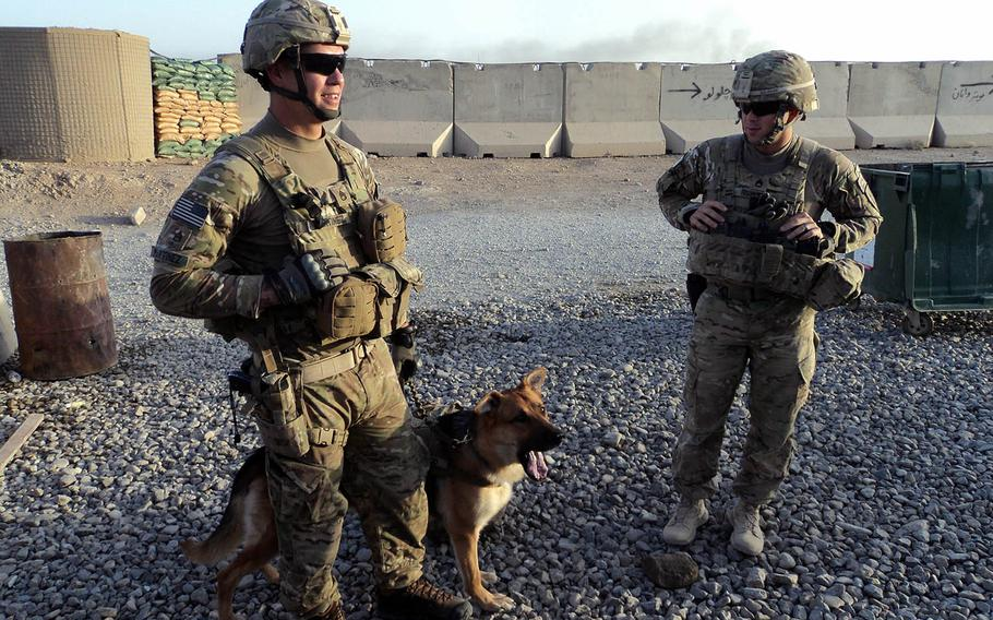 133p bs Staff Sgt. Shawn Martinez (left) and Staff Sgt. Ryan Risher (right), both assigned to the 2nd Battalion, 32nd Field Artillery, 4th Infantry Brigade Combat Team, 1st Infantry Division, stand with Bono after returning from a patrol in Afghanistan in 2012. Martinez, Bono's handler on that deployment, later adopted the dog.