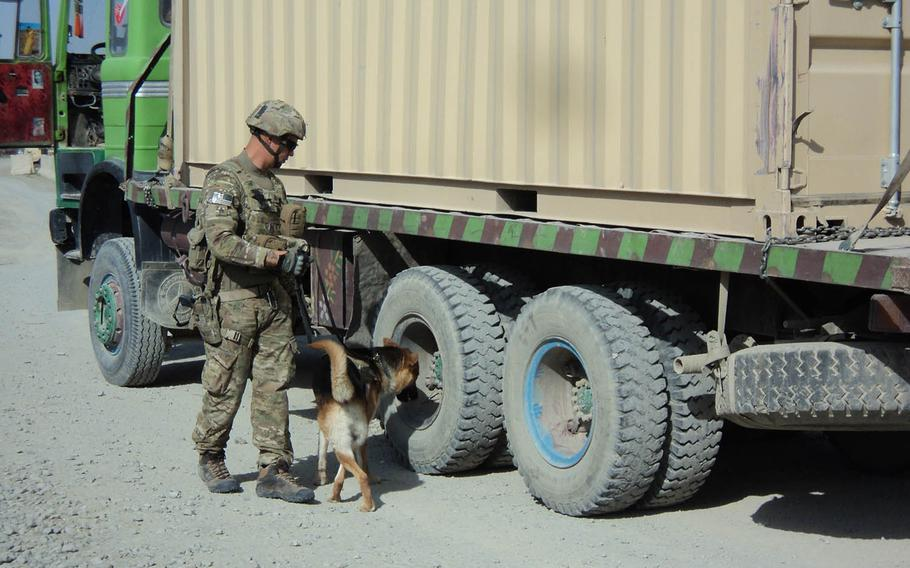 133p bsStaff Sgt. Shawn Martinez and Bono, a tactical explosive detection dog, inspect an Afghan truck for explosives near Forward Operating Base Sharana, Afghanistan in 2012. Martinez, Bono's handler on the deployment, later adopted him.