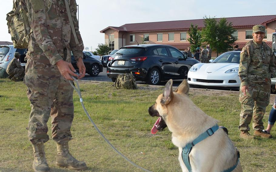 U.S. Army Pfc. Michael Jacobsen spends time with his 11-month-old German shepherd Bodie at Fort Hood, Texas, as he prepared to deploy with 1st Brigade Combat Team, 1st Cavalry Division. The unit will spend nine months in Europe as part of Operation Atlantic Resolve.