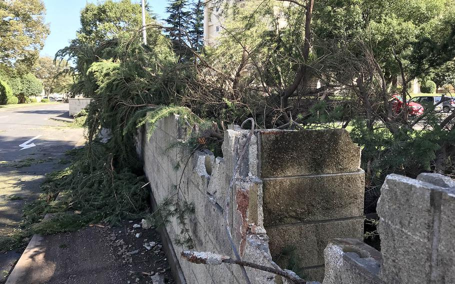 Winds from Typhoon Trami toppled a tree that damaged a concrete wall at Yokota Air Base, Japan, Monday. Oct. 1, 2018.