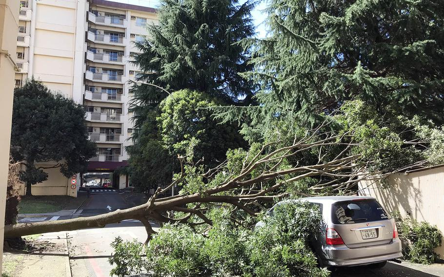 Winds from Typhoon Trami toppled trees that fell onto vehicles at Yokota Air Base, Japan, Monday. Oct. 1, 2018.