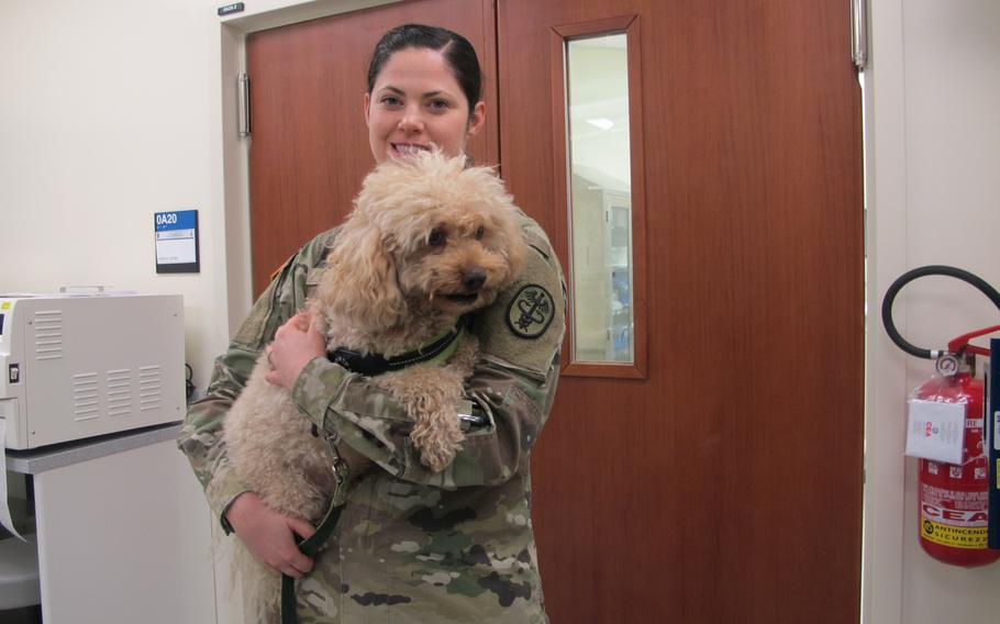 Capt. Jennifer Silvers, one of the veterinarians at the Vicenza Veterinary Treatment Facility, holds Desi, a miniature poodle, during a grand opening tour of the facility on Wednesday.