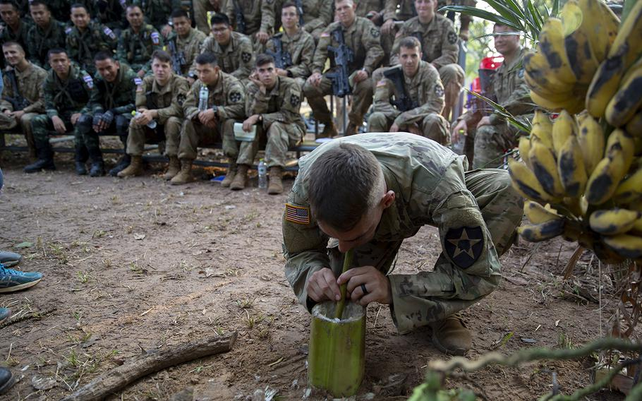 U.S. Army Spc. Louis Smith, of Bravo Company, 5th Battalion, 20th Infantry Regiment, drinks water from the base of a banana tree during exercise Cobra Gold 19 at Phitsanulok, Thailand, on Feb. 13, 2019.