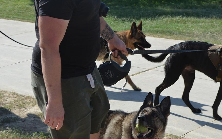 Army Sgt. Jake Ferkin adopted Iskra, his former military working dog after the dog's retirement last month. Ferkin said the 10-year-old German shepherd is still adjusting to retirement and tries to employ her training in explosives detection.