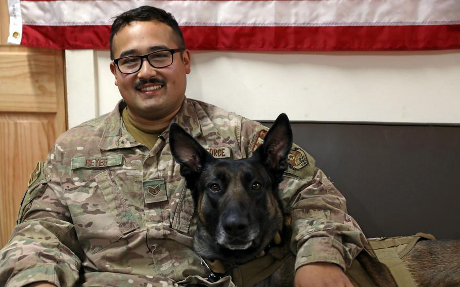 Air Force Staff Sgt. Juan Reyes sits with his military working dog partner Cvoky in Kuwait on June 16, 2020. The team visited Kuwait to seek treatment after Cvoky suffered a heat injury.