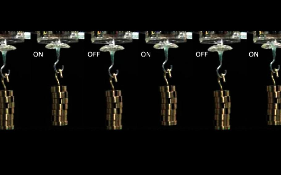 An Army-funded project has developed a self-healing material patterned after squid ring teeth that could be used to repair materials under continual repetitive movement such as robotic machines, prosthetic legs, ventilators and personal protective equipment like hazmat suits.