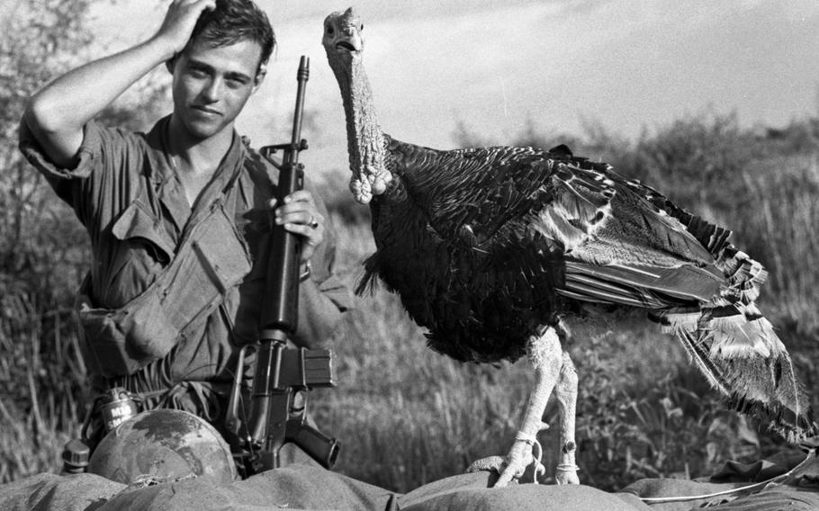 Staff Sgt. Raymond Scherz of Addison, Ill., seems to be pondering the best way to convert this feathered visitor to C Company, 2nd Battalion, 39th Infantry, 9th Infantry Division, into Thanksgiving dinner at the nearby Bear Cat base camp.