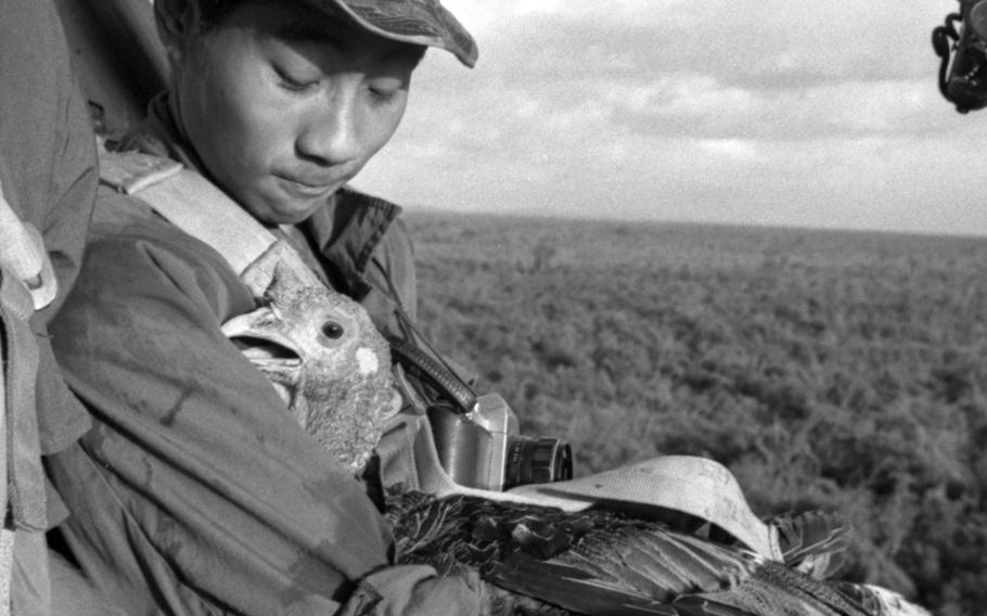 A feathered passenger gets the VIP treatment on the way to a base in Vietnam where hungry soldiers eagerly await its arrival in November, 1967.
