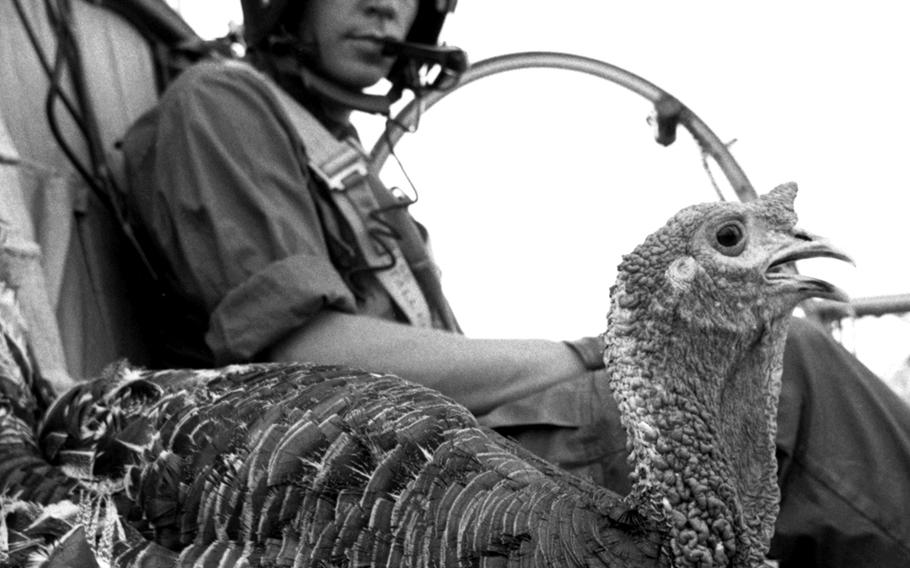 A feathered passenger gets the VIP treatment (albeit a one-way trip) on the way to a base in Vietnam where hungry soldiers eagerly await its arrival in November, 1967. The turkey was one of 57,000 sent in to provide as many as possible of the half-million U.S. servicemembers in Vietnam with the traditional holiday feast.