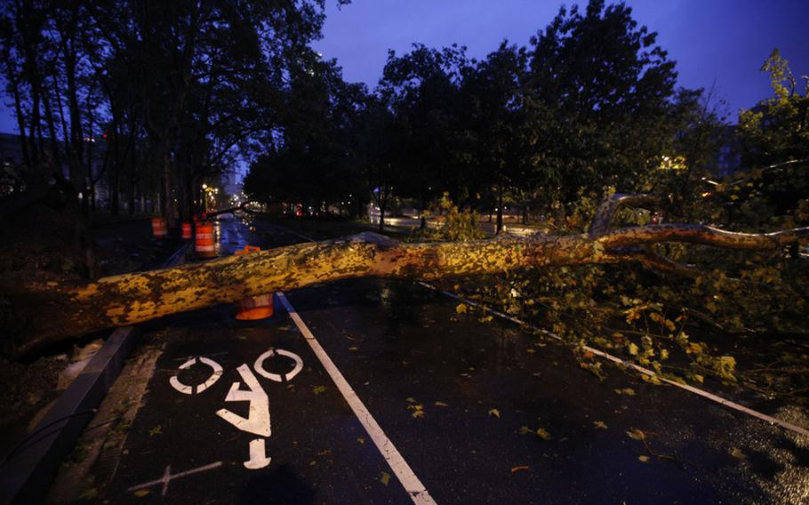 A downed tree blocks a section of the Benjamin Franklin Parkway in Philadelphia on Sunday, as Hurricane Irene makes its way along the Eastern Seaboard. Irene slammed into Pennsylvania overnight, bringing rain and gusty winds that generated widespread flooding, toppled trees, caused several buildings to collapse and prompting water rescues along swollen creeks and rivers.