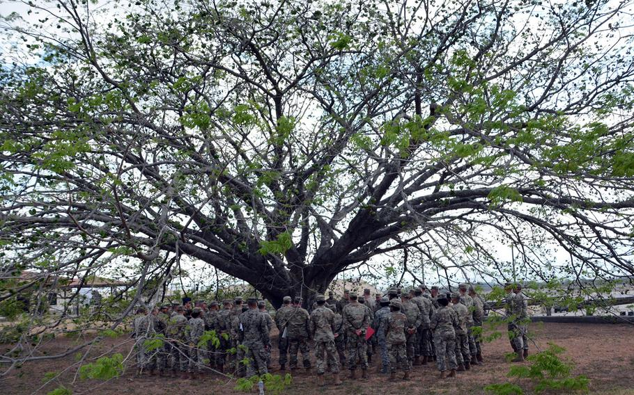 """Under the canopy of the so-called Tree of Life beside the Soto Cano Air Base flight line, commanders of Joint Task Force-Bravo speak to soldiers and airmen during a weekly """"close-out"""" ceremony, Friday, March 8, 2019."""