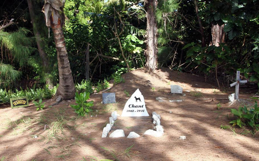 Jungle growth encroaches on an informal pet cemetery on Kwajalein Island, which has been used for decades by residents, who are allowed to bring cats and dogs to the tiny Pacific island.