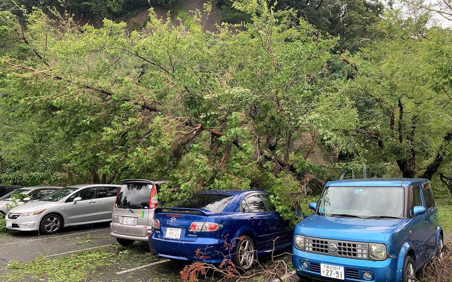 Trees downed by Typhoon Faxai shroud automobiles near Sakura Heights tower at Yokosuka Naval Base, Japan, Monday, Sept. 9, 2019.