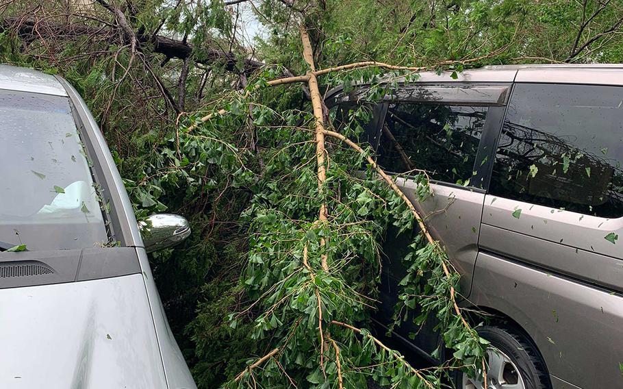 Trees felled by Typhoon Faxai cover automobiles at Yokosuka Naval Base, Japan, Monday, Sept. 9, 2019.