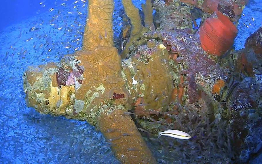 A propeller from a TBM/F-1 Avenger torpedo bomber found during a recent underwater expedition at Truk Lagoon, Federated States of Micronesia.