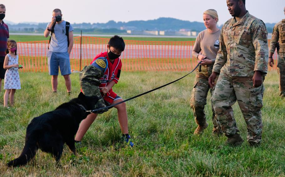 A young boy participates in a K-9 demonstration with the 51st Security Forces Squadron at Liberty Fest 2020 on Osan Air Base, South Korea, Saturday, July 4, 2020.