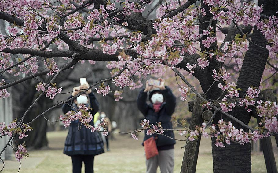 Yoyogi Park, seen here on Feb. 26, 2021, and other popular areas in central Tokyo are no longer off-limits to those stationed at Yokota Air Base, Japan.