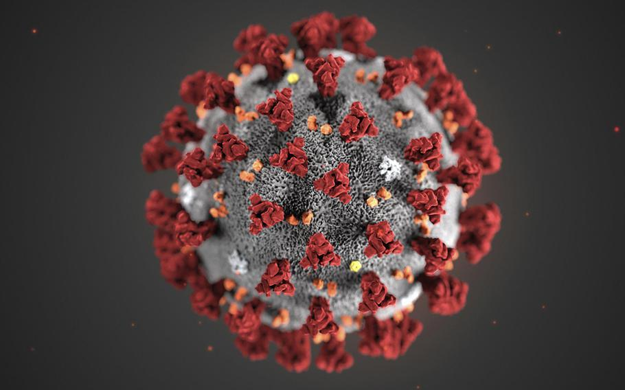 A Centers for Disease Control and Prevention illustration shows the 2019 Novel Coronavirus. This virus was identified as the cause of an outbreak of respiratory illness first detected in Wuhan, China.