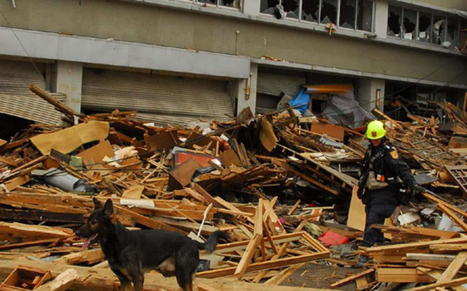 Atticus, a trained rescue dog, and her owner Jennifer Massey, a canine search specialist with Virginia's Fairfax County Search and Rescue, climb over rubble Tuesday morning searching for survivors of deadly tsunamis in Ofunato, Japan, a city of 41,000 about 260 miles northeast of Tokyo.