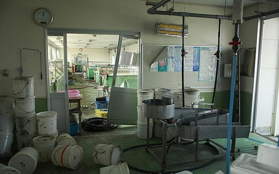 An oyster facility on the Matsushima coast sits battered and unused.