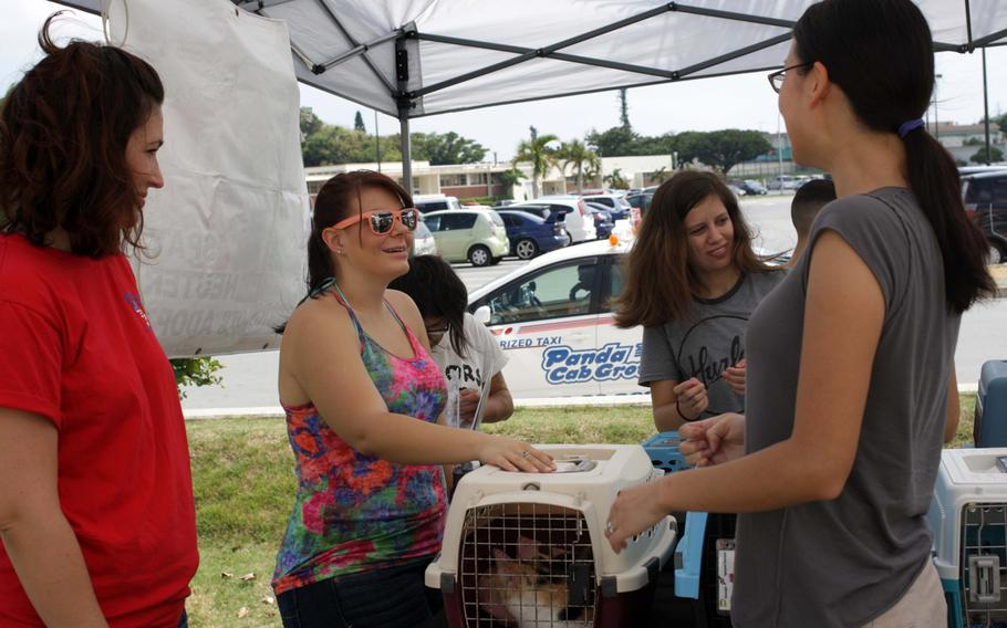 Volunteers discuss the current animals in foster care during an adoption event on Kadena Air Base, Okinawa, Sept. 7, 2013.