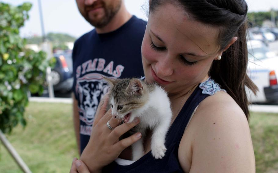 Marine Pfc. Melissa McCormack, an aircraft maintenance specialist with Marine Aviation Logistics Squadron 36, cuddles with kitten Marie during an adoption event on Kadena Air Base, Okinawa, Sept. 7, 2013.