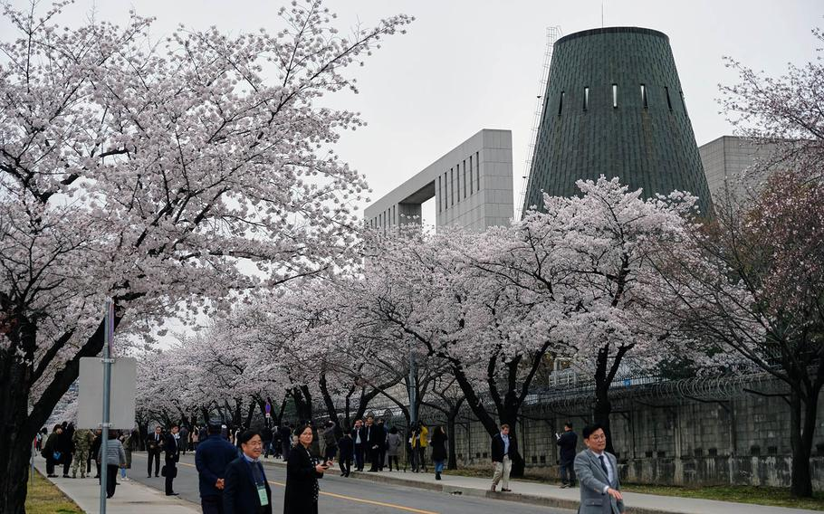 South Korean visitors take time to appreciate the cherry blossoms during a tour inside Yongsan Garrison, South Korea, on Tuesday, April 9. 2019.