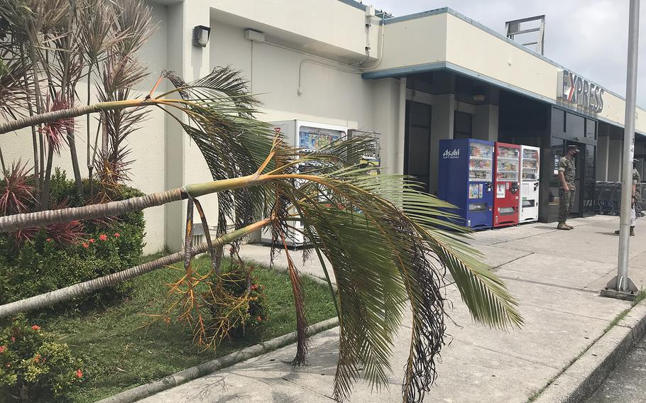 Typhoon Maysak knocked down trees on U.S. bases in Okinawa, inflicted minor damage to facilities and left some Marines without power on Tuesday, Sept. 1, 2020.