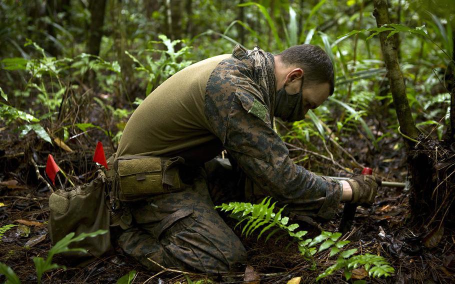 Marine Staff Sgt. Aaron Birdwell, an explosive ordnance disposal technician with Task Force Koa Moana, searches for unexploded ordinance near an airfield in Palau, Aug. 4, 2020.
