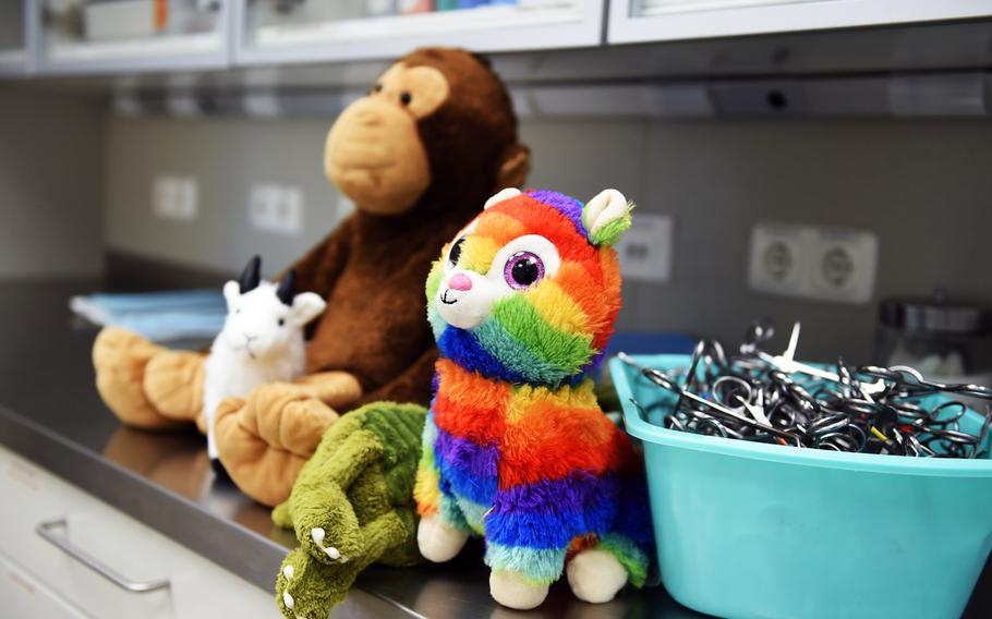 ''Patients'' wait in line at the teddy bear suture clinic in Vilseck, Germany, Wednesday, Aug. 28, 2019. Army veterinary technicians at the clinic practiced stitching up wounds on all types of stuffed animals, not just teddy bears.