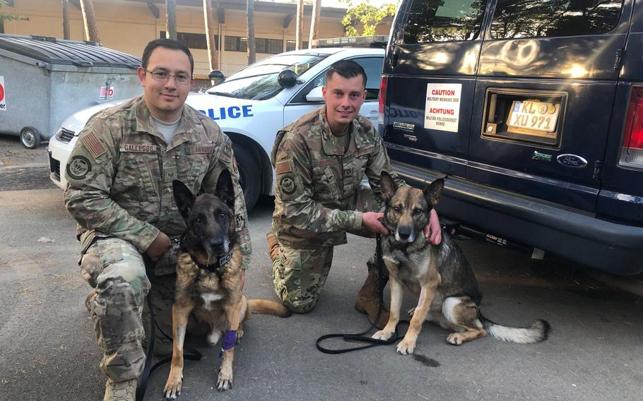 Staff Sgts. Antonio Gallegos, left, and Andrew T. Kraft, are pictured with their Belgian Malinois military working dogs, Diesel and Sky, respectively, on Friday, Sept. 20, 2019, at Ramstein Air Base, Germany.