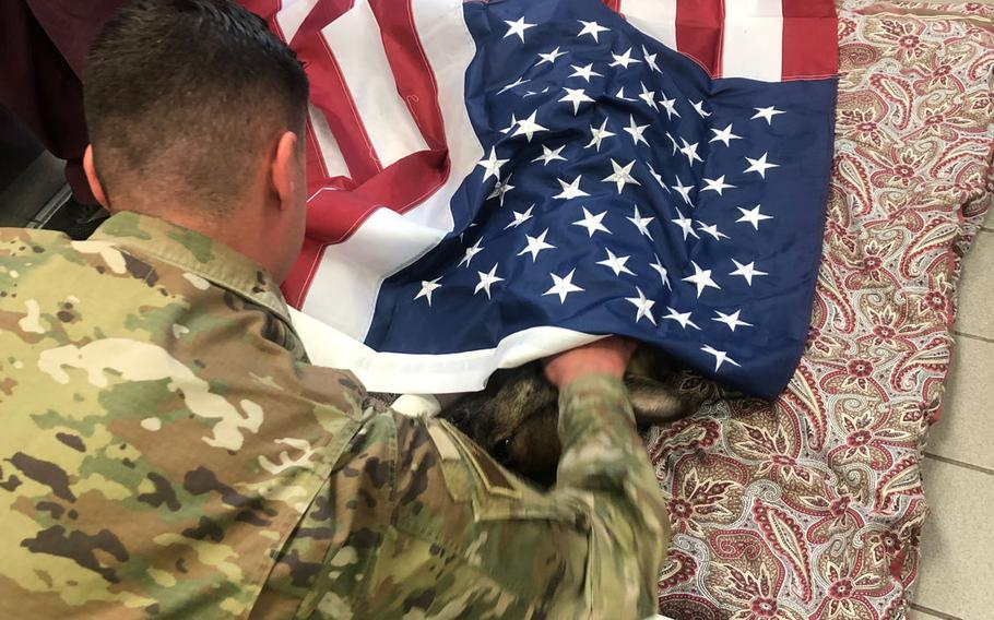 Staff Sgt. Andrew T. Kraft, a military working dog handler at Ramstein Air Base, Germany, says a final good-bye to his dog, Sky, on  Friday, Sept. 20, 2019. Five-year-old Sky had to be euthanized after developing terminal cancer.