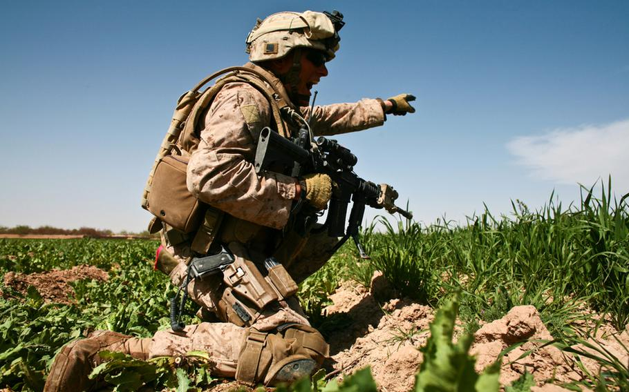 Staff Sgt. Christopher Whitman, 28, of Clearwater, Fla., points out the location of the Taliban position and yells for his men to start firing. March 11, 2010.