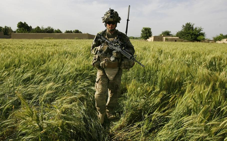 Sgt. Blaine Zimmerman walks through a wheat field during a mission near Strong Point Dennis at Combat Outpost Nalgham, on May , 2011.
