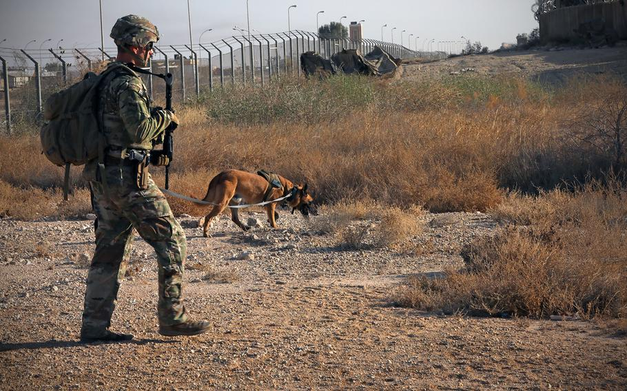 Polish engineer soldiers from Task Force Minecraft and a U.S. Military Working Dog Soldier assist a Base Operating Support Integrator engineer Soldier with base perimeter inspections at Al Asad Air Base, Iraq, Jan. 27, 2021.
