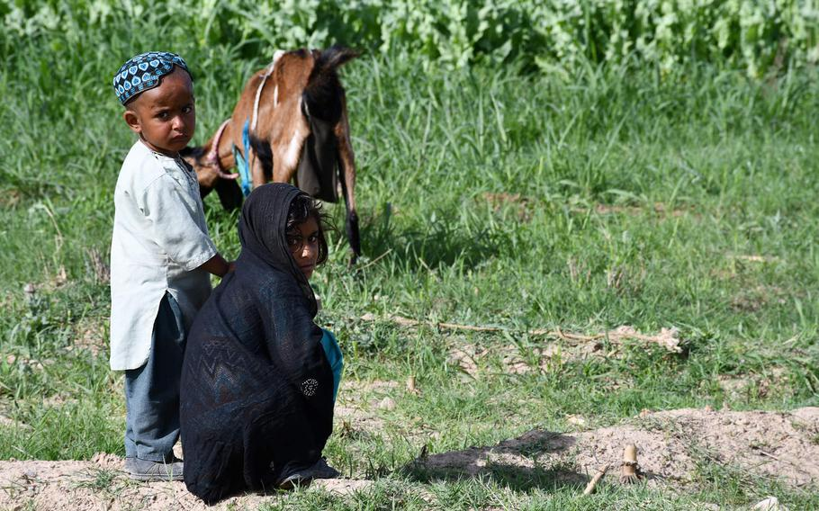 Two children look after animals in Afghanistan's southern Kandahar province in April 2019. The Afghan War remains the world's deadliest conflict for children, according to a United Nations report released June 15, 2020.