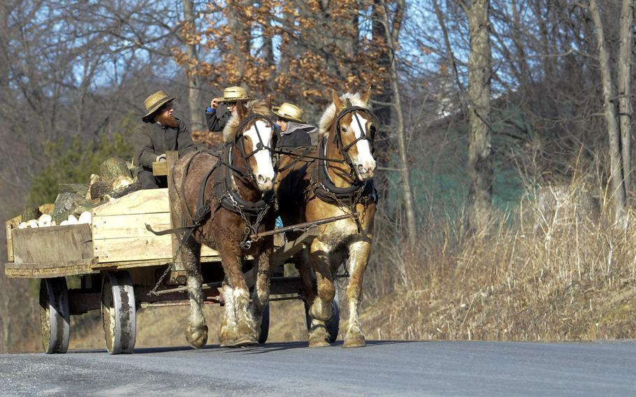 A horse team driven by an Amish farmer pulls a wagon loaded with wood and two boys along Sportsman's Road in Anthony Township near Mill Hall, Pa., on March 23, 2015.
