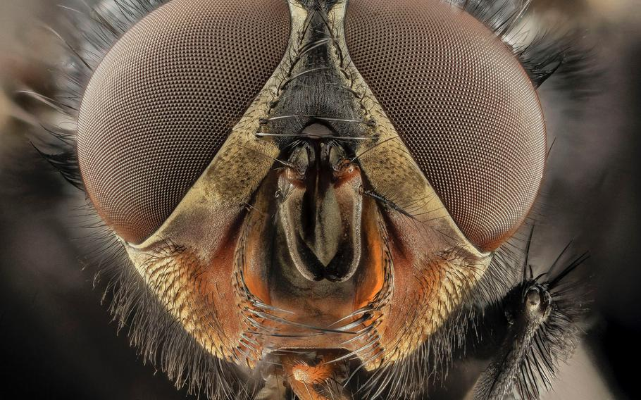 """8TH PLACE 