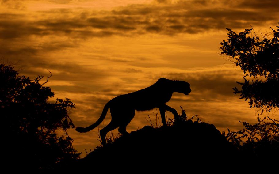 """10TH PLACE 
