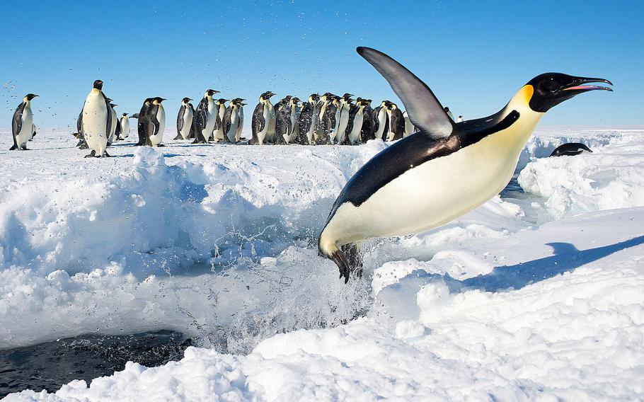 """2ND PLACE 