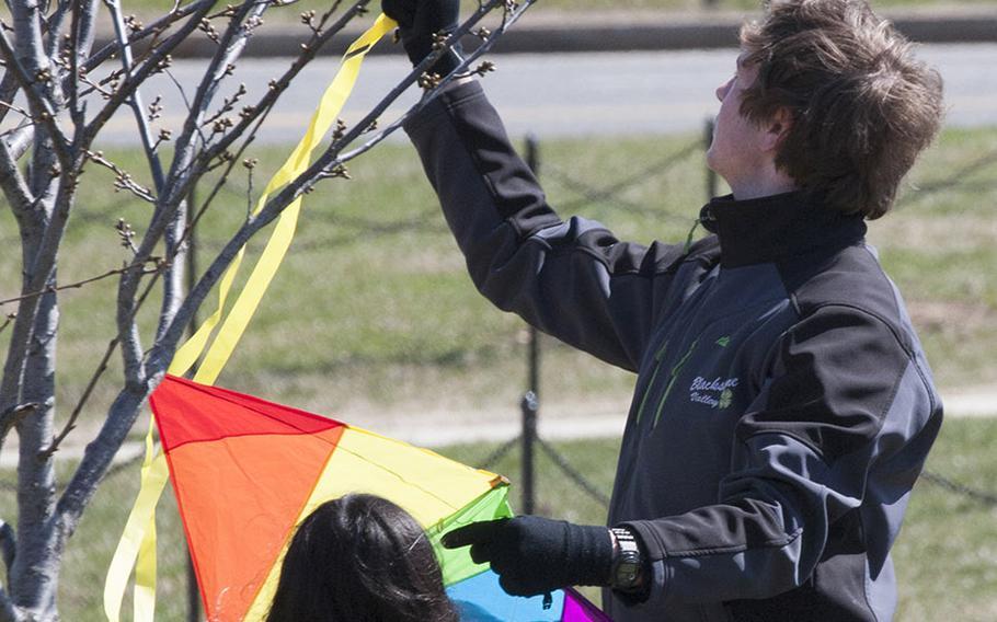 Tree vs. kite at the fifth annual Blossom Kite Festival in Washington, D.C., March 28, 2015.