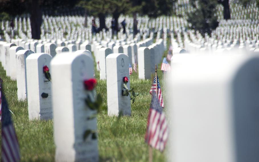 Volunteers laid 88,000 roses at Arlington National Cemetery during Memorial Day weekend on May 24, 2015.