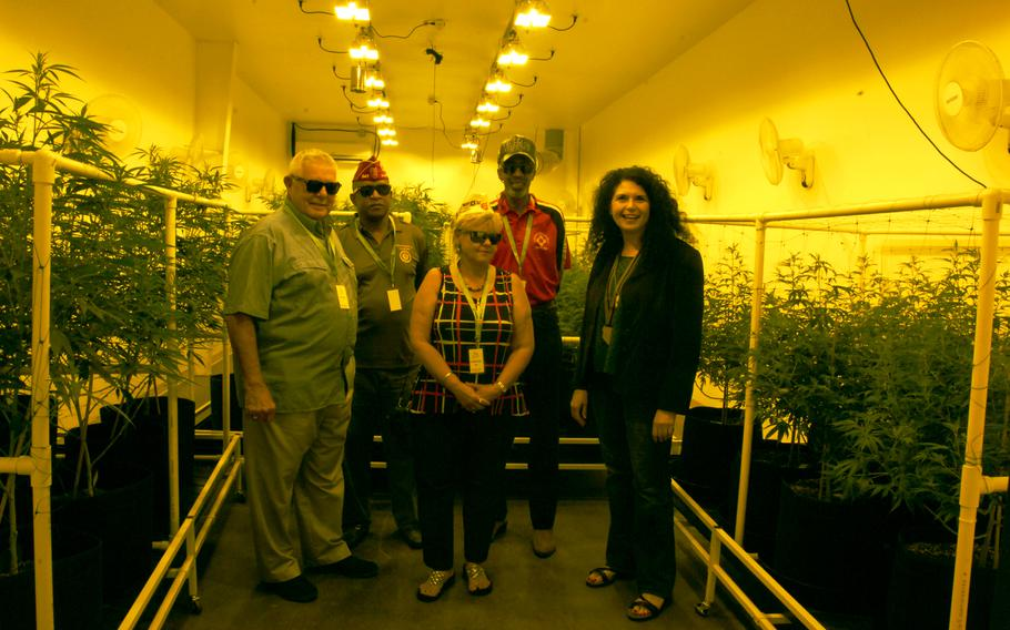From left, Alabama American Legion members Wayne Stacey, Rico Hall, Donna Stacey and a veteran who didn't want to be named get a tour of a cannabis cultivation site in Reno, Nev. during the Legion's national convention Wednesday, Aug. 23. Sue Sisley, right, a psychiatrist studying marijuana's effects on veterans with PTSD, accompanied them.