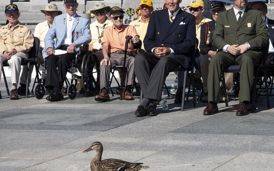 A duck wanders into the ceremony, to the amusement of Friends of the National World War II Memorial Chairman Josiah Bunting III, on Memorial Day in Washington, D.C., May 27, 2019.