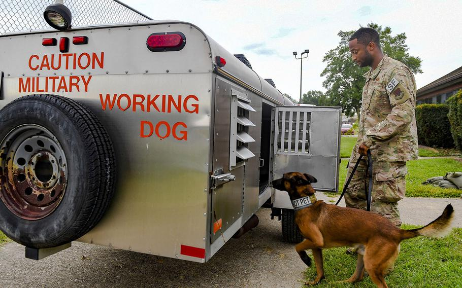 U.S. Air Force Staff Sgt. Noah Medor, 633rd Security Forces Squadron military working dog handler, puts his dog Ali, 633rd SFS MWD, into an evacuation trailer September 5, 2019 at Joint Base Langley-Eustis, Va. The military working dogs were evacuated to Joint Base Andrews, Md., in preparation for Hurricane Dorian.
