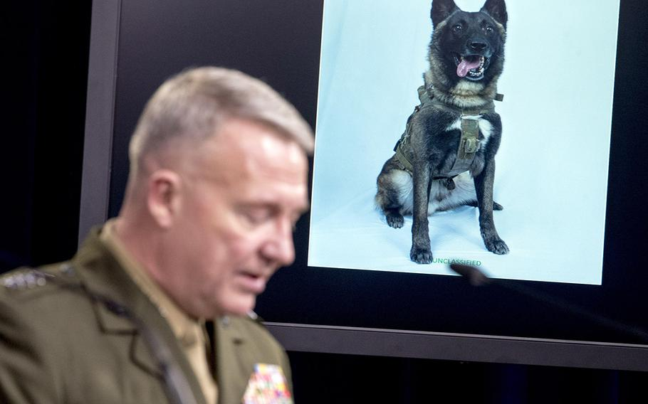 A working military dog is displayed on a monitor as U.S. Central Command Commander Marine Gen. Kenneth McKenzie speaks at a joint press briefing at the Pentagon in Washington, Wednesday, Oct. 30, 2019, on the Abu Bakr al-Baghdadi raid.