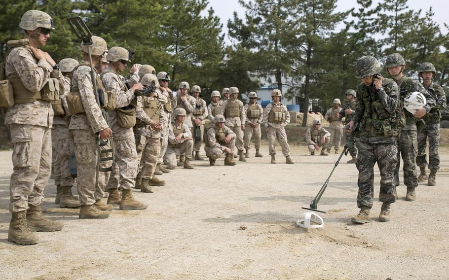 In a 2014 photo, Republic of Korea Marines demonstrate a minesweeping technique for U.S. Marines during Korean Marine Exchange Program 14-6 in Pohang, Republic of Korea.